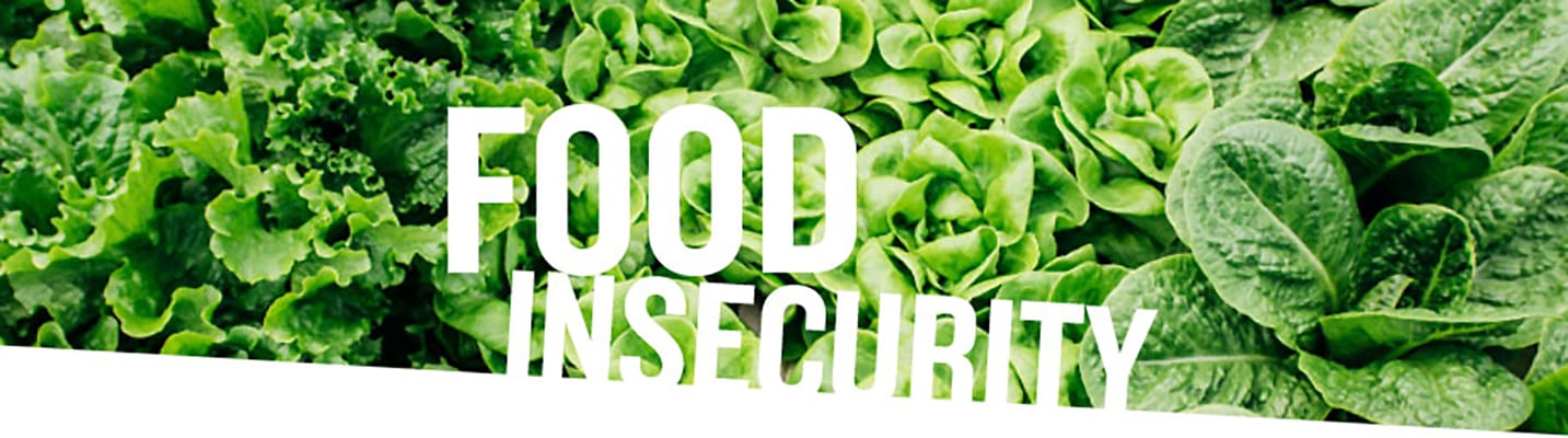 food insecurity header