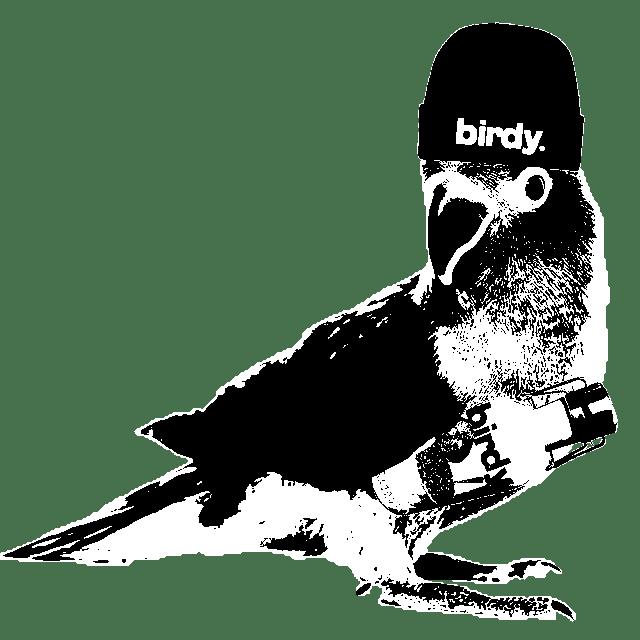 birdy birdy