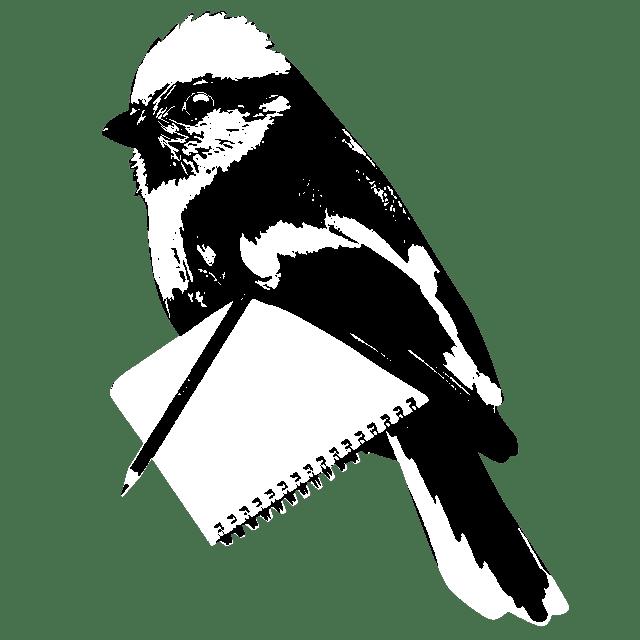 writer birdy