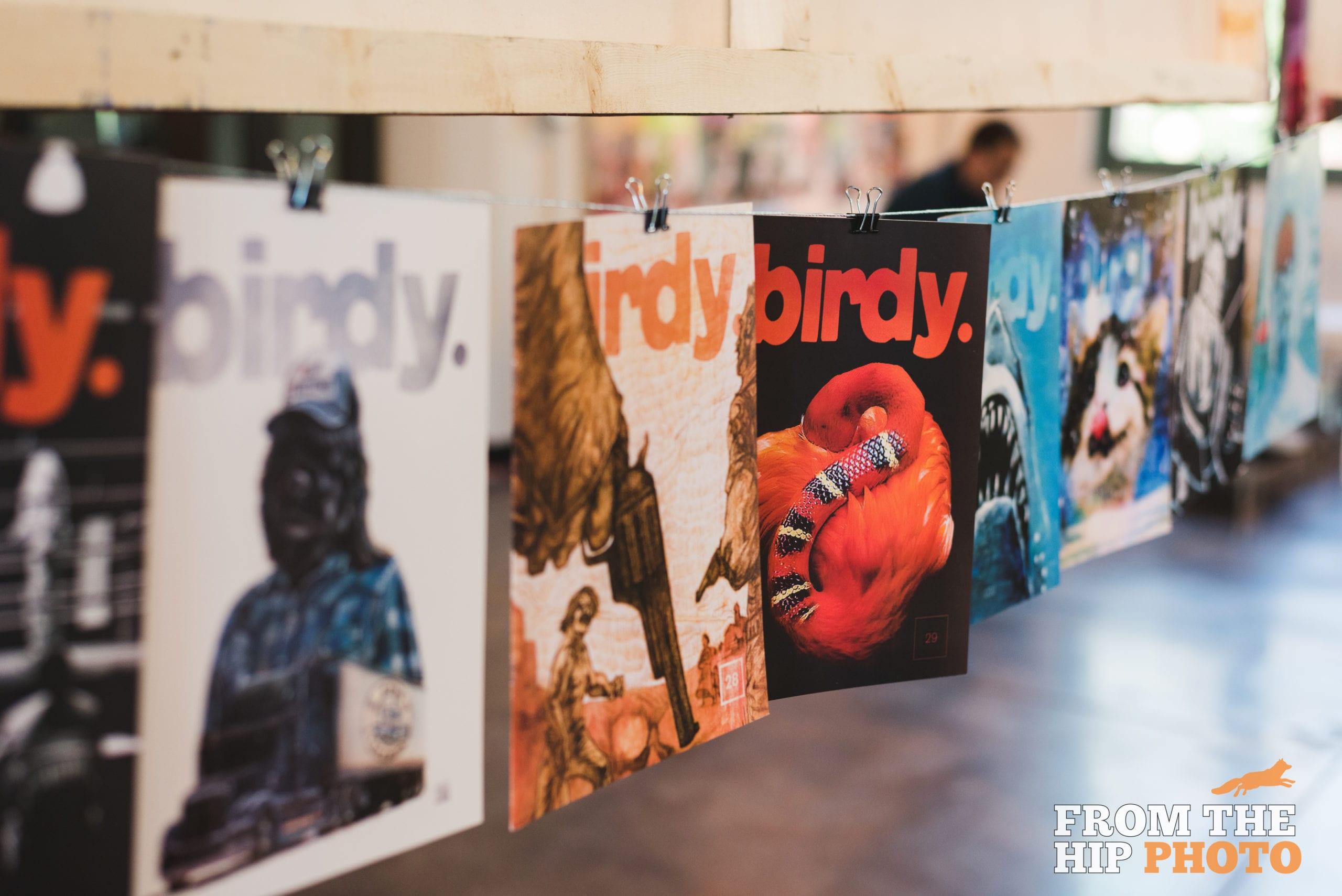 Birdy Bundle