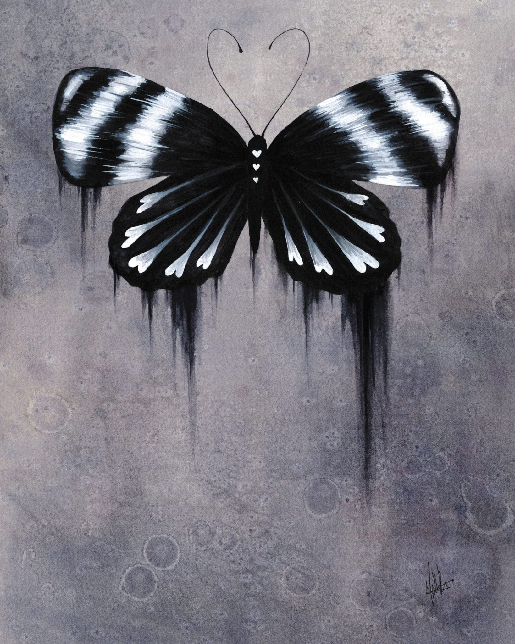 black and white butterfly by mallory hart