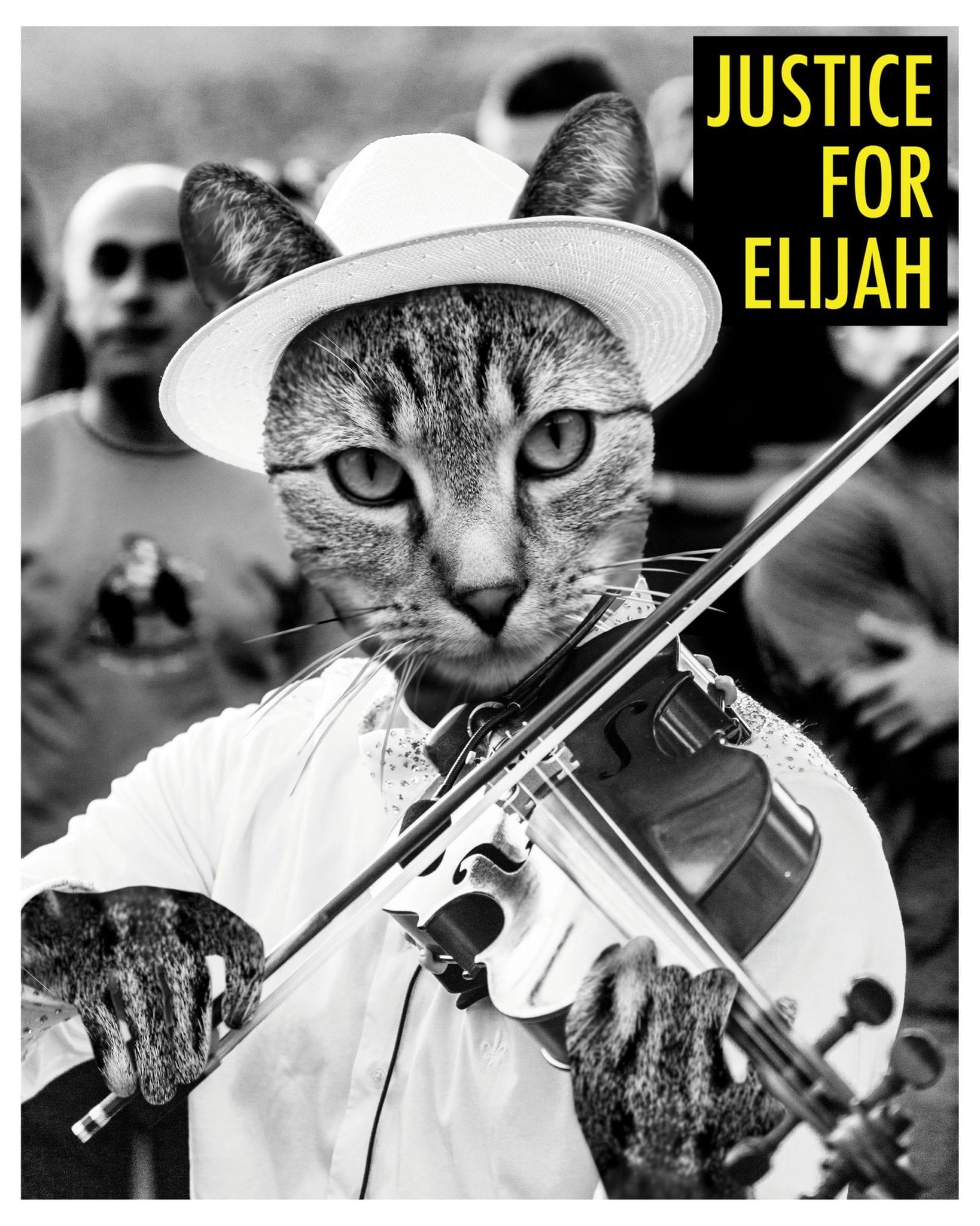 Justice for Elijah by Matt McCarthy