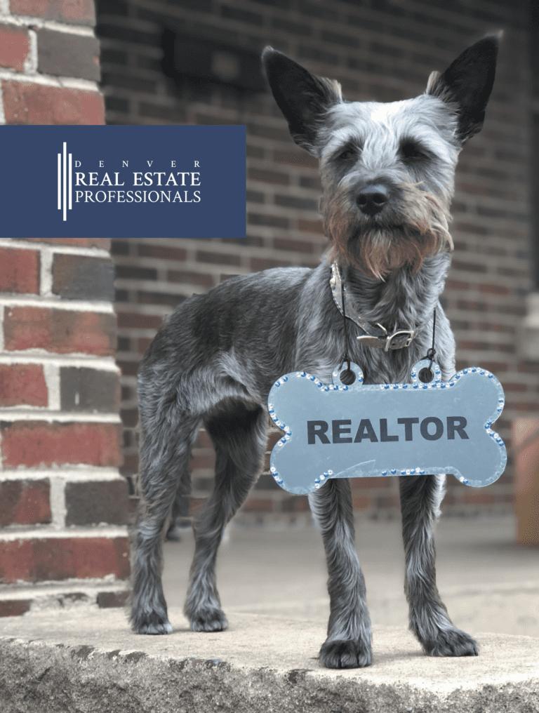 Denver Real Estate Pros