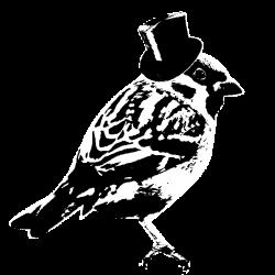 business birdy